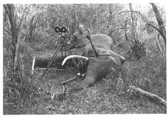 Martin with Elephant that Fell Next to Camera