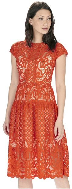 Orolay Women's Petite Solid Vintage Sleeveless Floral Lace Party Dress Red XS: Amazon Fashion