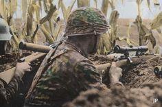 Waffen SS sniper in fall camo