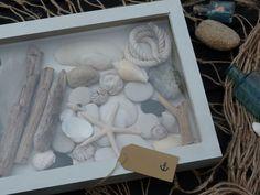 beachcomber: beachcomber shadow box