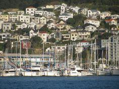 Wellington NZ Wellington City, Wellington New Zealand, Bay Lodge, River Camp, New Zealand Travel, Richard Armitage, South Pacific, Capital City, Auckland