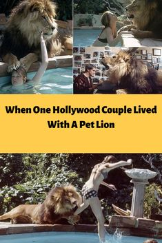 #When One #Hollywood #Couple #Lived With A Pet #Lion