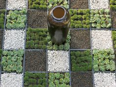 A grid garden (repetitive squares filled with gravels, succulents and grasses) is ideal for replacing a stretch of unloved lawn and is designed for minimum maintenance and maximum impact.