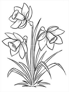 Many people believe that there is a magical formula for home decoration. You do things… Flower Sketches, Art Drawings Sketches, Easy Drawings, Drawing Flowers, Painting Flowers, Flower Coloring Pages, Colouring Pages, Wood Burning Patterns, Stained Glass Patterns