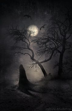Halloween, Autumn, and all things creepy and macabre. Dark Fantasy, Fantasy Art, Art Noir, Arte Obscura, Nocturne, Halloween Art, Halloween Night, Belle Photo, Dark Art