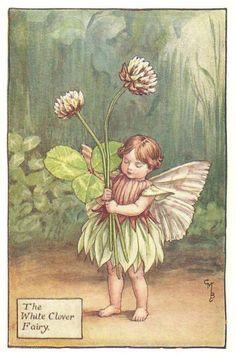 http://www.wellandantiquemaps.co.uk/lg_images/The-White-Clover-Fairy.jpg
