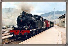 Comboio Histórico regressa ao Douro