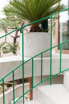 NP2F-.-house-renovation.-Marseille-4.jpg (1333×2000)