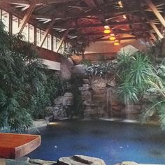 Indoor pool, this would be an underground pool. My plan is for a hobbit house with two secret floors below ground, the 1st is my office/library, and the second is my pool.