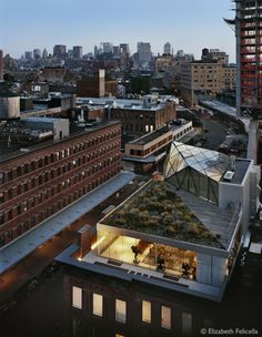 whatisindustrialdesign: Diane von Furstenberg's New York Penthouse by WORKac.: Diane von Furstenberg's New York Penthouse by WORKac. posted by Whatisindustriald New York Penthouse, Duplex New York, Manhattan Penthouse, Manhattan Nyc, Lower Manhattan, Architectural Digest, Design Exterior, Interior And Exterior, Ancient Architecture