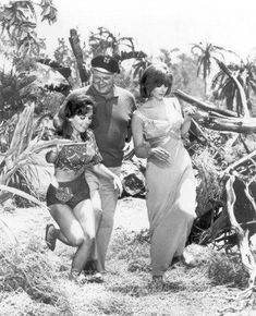 """Dawn Wells as 'Mary Ann,' Alan Hale Jr. as the 'Skipper' and Tina Louise as 'Ginger' from the television show """"Gilligan's Island. Giligans Island, Island Girl, Ginger Gilligans Island, Mary Ann And Ginger, Alan Hale Jr, Ginger Grant, Tina Louise, Old Tv Shows, Classic Tv"""