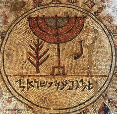 Ancient Hebrew symbols | Syd's Blog: Lulav - the Old-New Jewish Symbol?