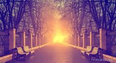 Člověk neumírá, odchází domů Tarot, Nordic Interior, Health Advice, Holographic, Grief, Romania, Reiki, Humor, Paranormal