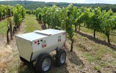 Un robot que trabaja de agricultor | Comunidad Valenciana | EL MUNDO