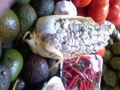 Cuitlacoche, el hongo negro del maíz que sabe delicioso para cocinar.