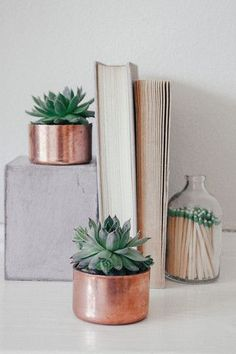 Mini copper (rosegold) planter, ideal for succulents or cacti... little watering with short growth height and short roots... #planter #table