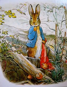 Beatrix Potter.  Peter Rabbit with the pocket hankerchief to fill with onions from Mr. McGregor's garden.