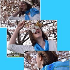 Elsa, blue poppies and cherry blossoms in Spring