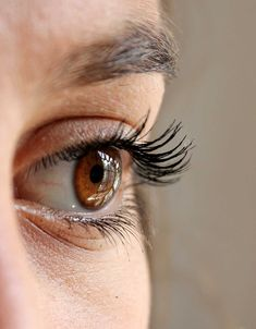 Eyelashes growth hacks in easy steps from The Wardrobe Stylist. DIY longer eyelashes tips, how to grow lashes for real in natural ways with serum. Get longer lashes with these products Bio Vegan, Eye Sight Improvement, Beautiful Eyelashes, Beautiful Eyes, Gorgeous Women, Dark Circles Under Eyes, Eye Circles, Under Eye Bags, Tired Eyes
