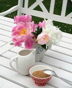 Så torkar du pioner: Bästa tipsen och bästa sorterna | Leva & bo Beautiful Flowers, Mugs, Tableware, Gardens, Dinnerware, Pretty Flowers, Cups, Dishes, Outdoor Gardens