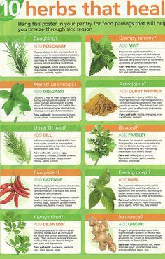 Ten Healing Herbs