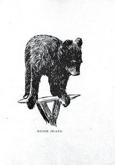 Animal - Bear - Baby bear drawing 013