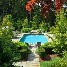 lush green landscaping around pool