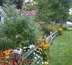 Curb Appeal Garden~ Love Love my gardens