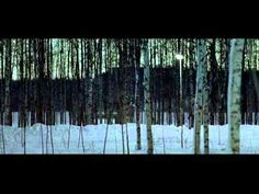 Let the Right One In - Tomas Alfredson/Hoyte van Hoytema