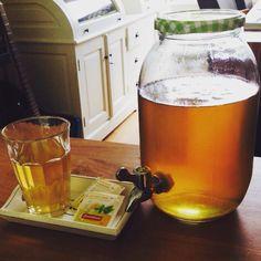 Maak en tap eenvoudig je eigen ijsthee! Met twee zakjes verkwikkende munt sinaasappel groene thee van #zonnatura en #melvita weide & veldbloemen  honing #biologisch oh en de glazen pot met tap is €4,95 bij de Wibra