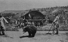 ainu-bear-worship