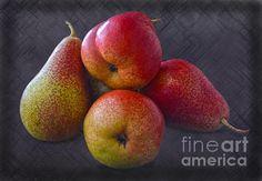 Forelle Pears by Sandi OReilly Still Life, Pear, Fruit, Bulb