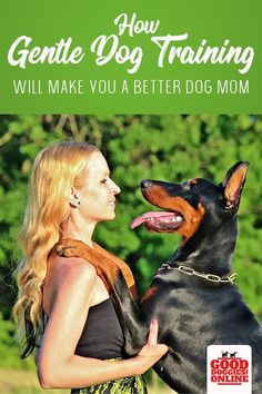 Dog obedience traini Dog obedience training doesnt have to be about yelling at your dog and using punishment. Find out how gentle and humane dog training is better for you and your dog. Youll still have a dog that listens and obeys. Labrador Retriever, Golden Retriever, Training Your Puppy, Dog Training Tips, Training Schedule, Training Equipment, Potty Training, Dog Minding, Dog Training Techniques