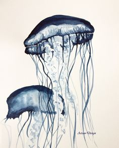 Jellyfish monochrome by artsan-design, watercolor painting Jellyfish, Monochrome, Watercolor Paintings, Rooster, Drawings, Inspiration, Animals, Design, Rich Colors