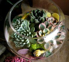 Deko Ideen für den Garten mit bunten Sukkulenten im Glasbehälter
