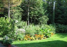 Végétaux / Renaturalisation | LeVert Paysage