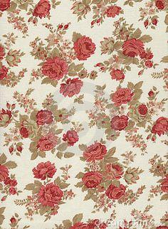 fancy lady pattern
