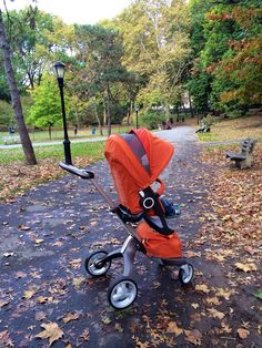 A stroll in the park •Stokke