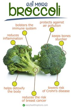 The health benefits of broccoli Here are some other ways to harness broccoli's powerful immune supporting nutrients (such as vitamin C, beta-carotene, trace minerals zinc and selenium, and others) to bolster immunity and support overall healt Sport Nutrition, Health And Nutrition, Health And Wellness, Health Tips, Health Options, Nutrition Tips, Protein Nutrition, Nutrition Month, Nutrition Activities
