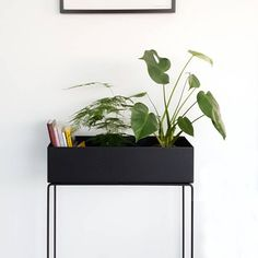 Ferm living plant boxes