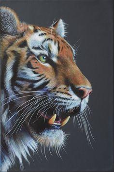 Tiger! by karlhcox