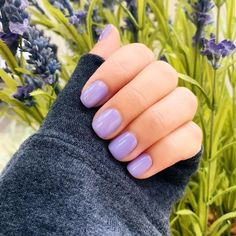 Lilac dreams with #DontTootMyFlute from our #OPIPeru Collection 💜   by: @beautyybyangelina  #purple #purplenails #opigelcolor #opi #opigel #gelmani #springnails #shortnails #gelmanicureideas Lilac Nails, Purple Nail Polish, Nail Polish Colors, Opi Nail Envy, Nail Pops, Manicure And Pedicure, Pedicures, Party Nails, Gorgeous Nails