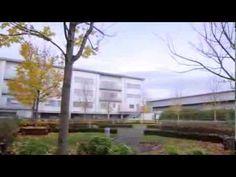 Maldron Hotel Limerick Maldron Hotel, Limerick City, Videos, Plants, Planters, Video Clip, Plant, Planting
