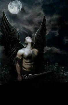 Dark fallen angel                                                                                                                                                                                 More
