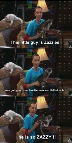 Dr. Sheldon Cooper, my hero. I've probably pinned this before, but hey, you can never have enough Zazzles :)