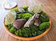 Edible arrangement at Noma #Copenhagen # ScanAdventures