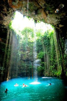 We swam in this Cenote on our way to Chichen Itza, one of the 7 wonders of the world in Mexico. There were swallows flying in the cave and black catfish swimming everywhere