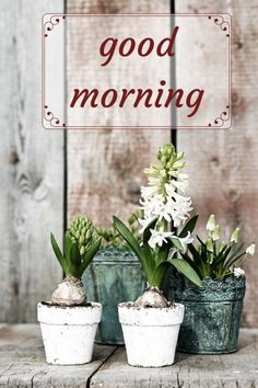 Start your day with a smile - Floral Cards