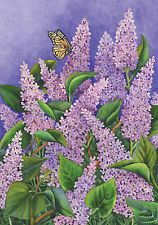 Monarch BuTterFly SuMMers LaveNder LiLiacs BUSH BLossoMs 0066 New Mini Flag