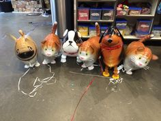 Dogs and cats can indeed be friends! Meet Ella the pug, Hanna the Cat, Ben the Daschund and Bekz the Bulldog. You can order them and more at http://www.balloons.com.au/Category/0/0/74/WALKING-PETS.html